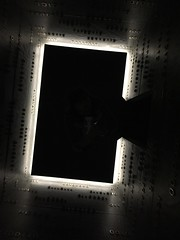 C elevator (idontkaren) Tags: museum elevator australia mona tasmania museumofoldandnewart