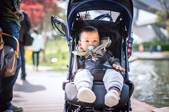 Portrait of baby (HIKARU Pan) Tags: china boy baby cute horizontal outdoors asia shanghai chinese lovely 50l 1dx canonef50mmf12lusm eos1dx