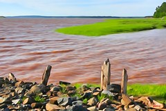 Fundy Tide In (photo fiddler) Tags: avondale grass hightide 2016 july