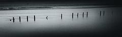 5D3_0465-Edit (johnrobertsphotography) Tags: wiggisland