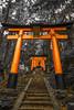 Fushimi Inari (afrigole) Tags: travel red lamp japan temple kyoto gate shrine asia 日本 旅行 torii 鳥居 fushimiinari 門 fushimi アジア 伏見稲荷 伏見 赤い