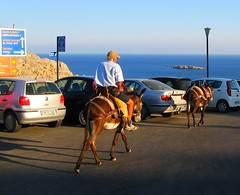 Donkey transport (Sergiu St. O.) Tags: donkey greece rodhos