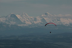 Gleitschirm mit Eiger - Mönch - Jungfrau ( Berg - Mountain ) in den Alpen - Alps im Berner Oberland im Kanton Bern der Schweiz (chrchr_75) Tags: chriguhurnibluemailch christoph hurni schweiz suisse switzerland svizzera suissa swiss chrchr chrchr75 chrigu chriguhurni mai 2015 hurni150510 albumzzz201505mai mönch kantonbern kantonwallis kantonvalais berg mountain montagne alpen alps albumjungfrau jungfrau viertausender montagna berner oberland albumdreigestirneigermönchjungfrau dreigestirn eiger bergeiger albumeiger