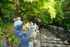 20150517-DS7_9990.jpg (d3_plus) Tags: street sky mountain plant nature japan trekking walking spring scenery shrine bokeh outdoor hiking fine wideangle daily  streetphoto  kanagawa    shintoshrine   buddhisttemple dailyphoto sanctuary   funicular thesedays superwideangle    fineday     holyplace tamron1735   ooyama  a05     tamronspaf1735mmf284dildasphericalif  tamronspaf1735mmf284dildaspherical d700    nikond700 tamronspaf1735mmf284dild tamronspaf1735mmf284  nikonfxshowcase cabelecar mountooyama