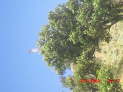"Pengembaraan Sakuntala ank 26 Merbabu & Merapi 2014 • <a style=""font-size:0.8em;"" href=""http://www.flickr.com/photos/24767572@N00/26558758123/"" target=""_blank"">View on Flickr</a>"