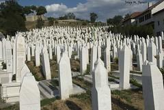 CEMENTIRI (Bsnia i Herzegovina, agost de 2012) (perfectdayjosep) Tags: sarajevo balkans balcanes balcans saraievo perfectdayjosep bosnieiherzegovine bsniaiherzegovina
