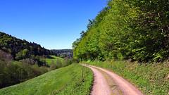 what a day for a daydream (MH *) Tags: blue forest weide pentax meadow wiese himmel berge trail blau limited wald weg wanderung pfad k3 21mm sexau mhlenbach