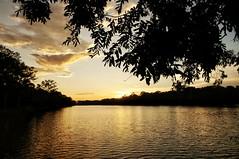 #sunset #cambodia #lake #nature #colours #travelphotography #travel #atardecer #camboya #lago #naturaleza #colores #viajar #picoftheday #fotodeldia (lunatica_89) Tags: travel sunset naturaleza lake nature lago atardecer cambodia colours colores viajar picoftheday camboya travelphotography fotodeldia