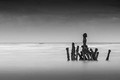 Help ! (Olivier GRH) Tags: longexposure blackandwhite france beach nikon noiretblanc bretagne lee fra mare bouchots poselongue baiedesaintbrieuc planguenoual gnd09 jospinet oliviergrh nisifstopper