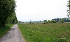 12-IMG_1869 (hemingwayfoto) Tags: blhen gras grasblte grosenheidorn landschaft natur norddeutschland ostufer regionhannover wiese