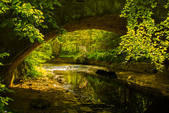 River Cullen (williamrandle) Tags: bridge trees summer water stone backlight reflections river spring woodlands nikon holidays arch shadows outdoor peaceful structure shade serene moray cullen banffshire northeastscotland d7100 tamron2470f28vc rivercullen