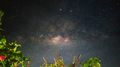 Milky way, front yard view (a4mohammad_arfan) Tags: milkyway nx300 stars astrophotography nightphotography landscape nature naturelover