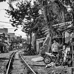 Living along the tracks thumbnail