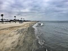 Lana. (Ryan Hallock) Tags: ocean beach water pacific belmont longbeach iphone ryanhallock