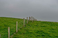 HFF (Kvse) Tags: ireland sky green fence gloomy overcast minimal cliffsofmoher drizzle
