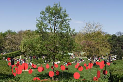 La Fête des Tulipes se déroule chaque année dans le parc de la Légion d'honneur © M. Rondel