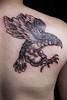 10931119_595082703924530_7231197168015442503_n (GoldenIronTattoosToronto) Tags: art eagle tattoos bodyart tattooart tatuagem tattoostudio tattoodesign artlovers tattoostyle backtattoo tattootime tattoolife inkaddict tattoocollection customtattoos blackandgreytattoos tattoolovers torontotattoos inkjunkeyz goldenirontattoostudio