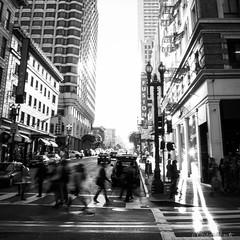 San Francisco Morning Light