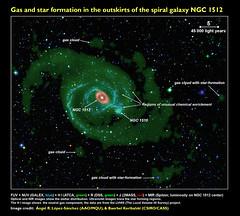 Star formation in NGC 1512 / NGC 1510 (angelrls, El Lobo Rayado) Tags: gas research iac csiro 2015 aao pressrelease starformation ngc1512 icrar chemicalabundance