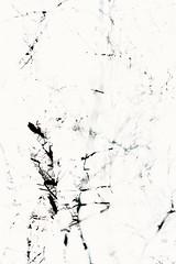 Ninth Disintegration (pni) Tags: tree suomi finland helsinki branch multipleexposure helsingfors tripleexposure multiexposure skrubu pni pekkanikrus