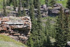 Bow river hike Seebee Alberta Canada (davebloggs007) Tags: cliff canada river rocks hike alberta edge bow seebee