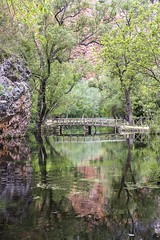 Monasterio de Piedra (kinojam) Tags: bridge lake reflection tree verde green water canon puente lago kino reflejo canon6d kinojam