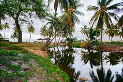 ES8A1493 (repponen) Tags: ocean trip beach garden island hawaii maui shipwreck gods lanai canon5dmarkiii