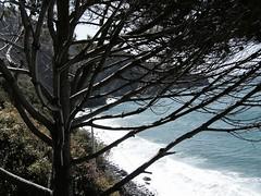 Soffio del mare (Beggo e Marina) Tags: mare liguria 5terre