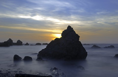 Last of the Sun (dcnelson1898) Tags: california northerncalifornia outdoors photography coast nikon highway1 pacificocean fortbragg mackerricherstatepark mendocinocounty