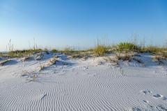 Pensacola Beach - White Sands (Tony Webster) Tags: ocean beach us sand unitedstates florida whitesands whitesand pensacola pensacolabeach gulfislandsnationalseashore santarosaisland gulfislandnationalseashore