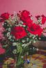 IMG_4156 (Josy'ta) Tags: rose rosas rosascolombianas flowers flores flor diadosnamorados love