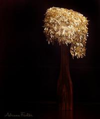 af0606_6752 hat (Adriana Fchter) Tags: modateca traje chapeus old antigo beirao clouth fashion vintage art estilista renda hats surrealista black dourado gold vestidos broche salmao bege beige stilllife