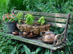 HAPPY GARDEN BENCH MONDAY! (Visual Images1) Tags: green garden hbm sooc benchmonday