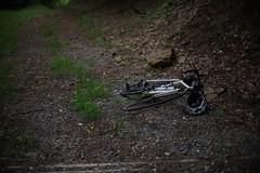 () Tags: bicycle chrisking mycielo