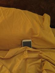 June 24, 2016 (365 Gay #60) (gaymay) Tags: california gay love bed phone desert palmsprings pillow sheet 365gay