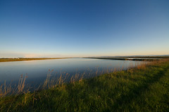 Saline Landscape