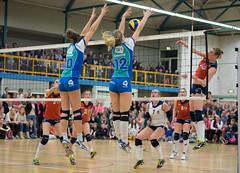 N4115040 (roel.ubels) Tags: sport flamingos volleyball taurus 56 volleybal oskam 2015 topsport gennep topdivisie