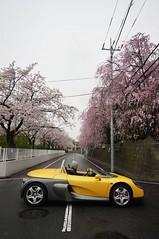 DSC06723 (macco) Tags: auto car sport japan cherry spider automobile blossom renault   sakura      renaultsportspider     sautevent    versautevent