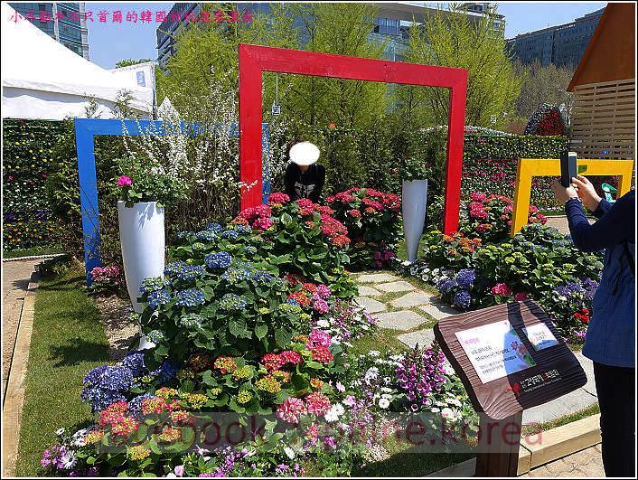高陽國際花卉博覽 (15).JPG