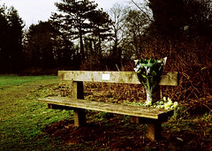 op - tribute bench (johnnytakespictures) Tags: flowers summer sun film nature sunshine pen bench lomo xpro lomography crossprocessed natural leicestershire crossprocess olympus 200 tribute bouquet analogue halfframe hayes warwickshire beaconhill loughborough countrypark nuneaton colorslide ee3 chapelfields hartshill