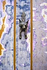 (Coral G. Granda) Tags: street door uk england animal vintage puerta colorful paint pomo fox shoreditch londres bricklane zorro eastlondon columbiaroad