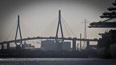 Hamburg2015-023
