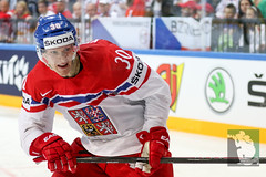 "IIHF WC15 SF Czech Republic vs. Canada 16.05.2015 007.jpg • <a style=""font-size:0.8em;"" href=""http://www.flickr.com/photos/64442770@N03/17583383500/"" target=""_blank"">View on Flickr</a>"
