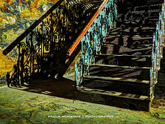 Underground (Paula McManus) Tags: shadow urban green abandoned stairs underground shadows urbandecay grunge basement indoor olympus staircase adelaide ornate southaustralia cellar omd em10 paulamcmanus 20mmf17 olympusomd adelaideunderground