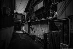 grafica_jp_flickr-1531 (grafica.tokyo) Tags: japan sony voigtlander f45 大阪 osaka 15mm nishinari superwideheliar フォクトレンダー α7 西成 ã¬ãã ilce7 スーパーワイドヘリアー arfa7