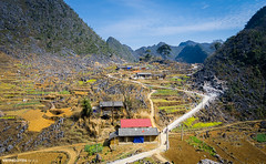 A ethnic minority village in HaGiang (:: Focus Studio ::) Tags: park travel food cliff house mountain plant building tree green tourism nature field rock stone architecture rural landscape asian countryside asia vietnamese village paddy native outdoor plateau traditional hill farming poor harvest pass grow vietnam growth plantation serene ha van lush agriculture curve ethnic minority dong sapa cultivation global geological terraced giang geopark hagiang dongvan