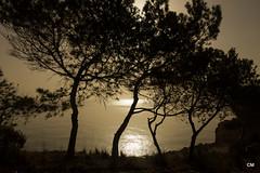De quatre terres (.carleS) Tags: sea sun sol canon eos mar mediterranean alba pins amanecer pinos nou cala mediterrneo poble mediterrani moraig 60d benitatxell caeduiker