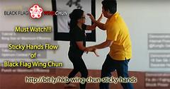Wing Chun Sticky Hand Basic Rolling (Hek Ki Boen Eng Chun) Tags: man black flag wing chun donnie yen ki hek ip yip boen