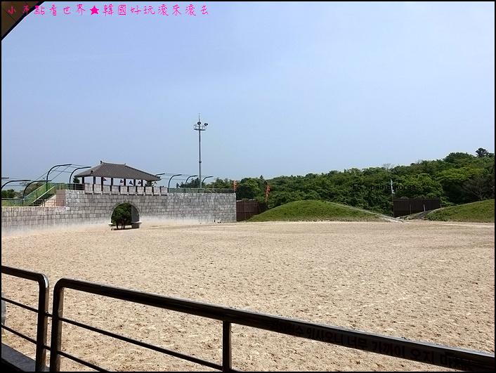 濟州The馬 park (5).JPG