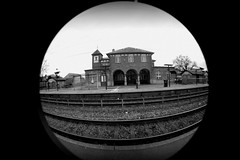 PRISAS (pausasa photographies) Tags: bw white fish black pez eye art blanco station del train tren ojo photography design student holidays y artistic time negro fine arts paso estacion hurry fotografia artistica artes bellas tiempo atemporal prisas
